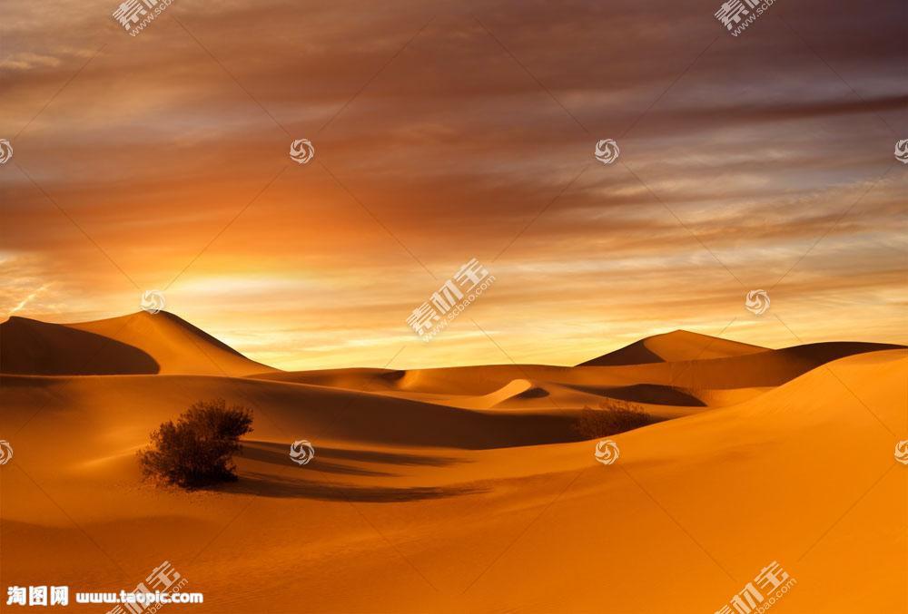 沙漠皇冠风景