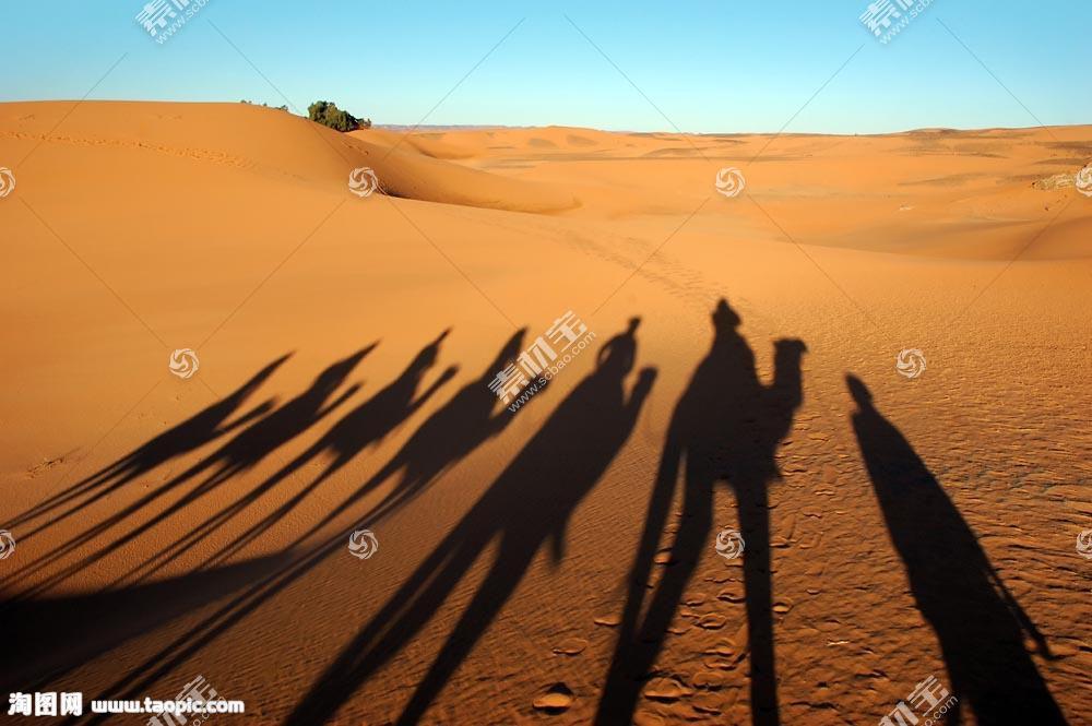 沙漠骆驼商队