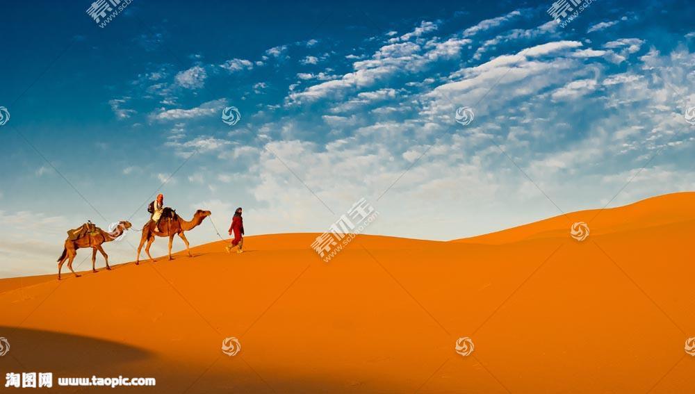 蓝天下的沙漠和骆驼队