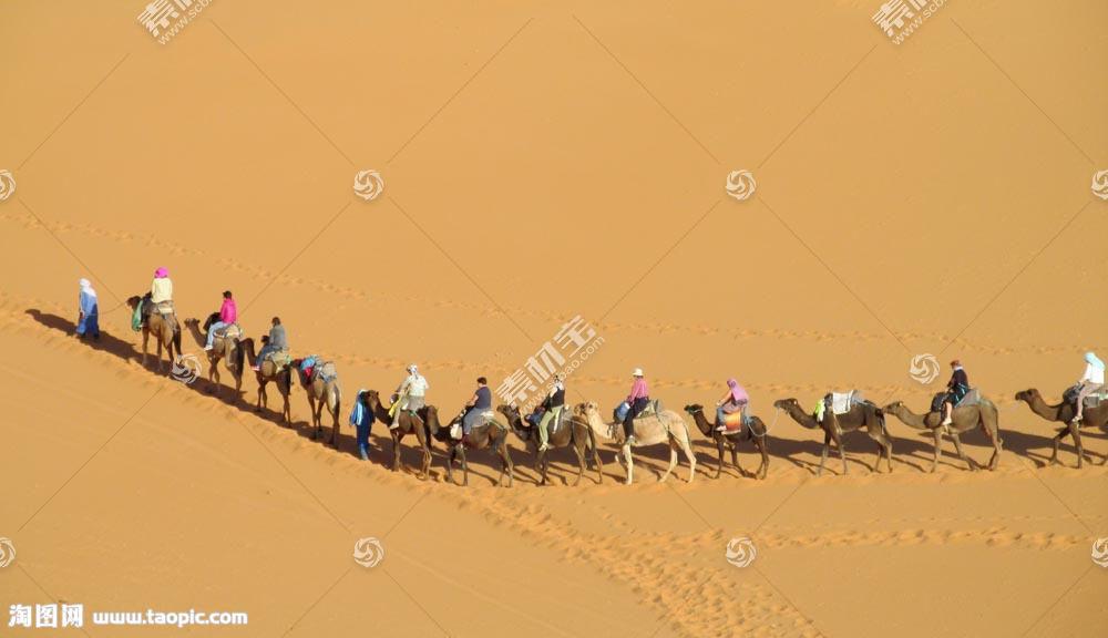 沙漠里的骆驼队