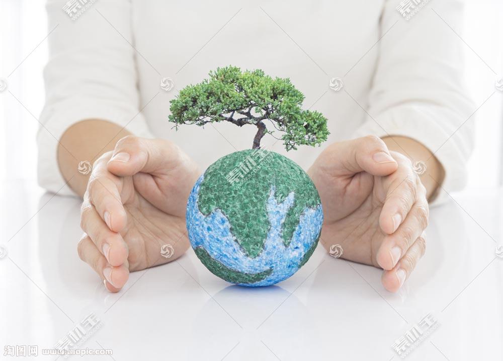双手间的地球和树木