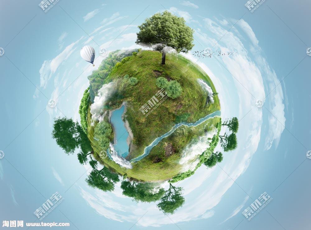 地球上的树