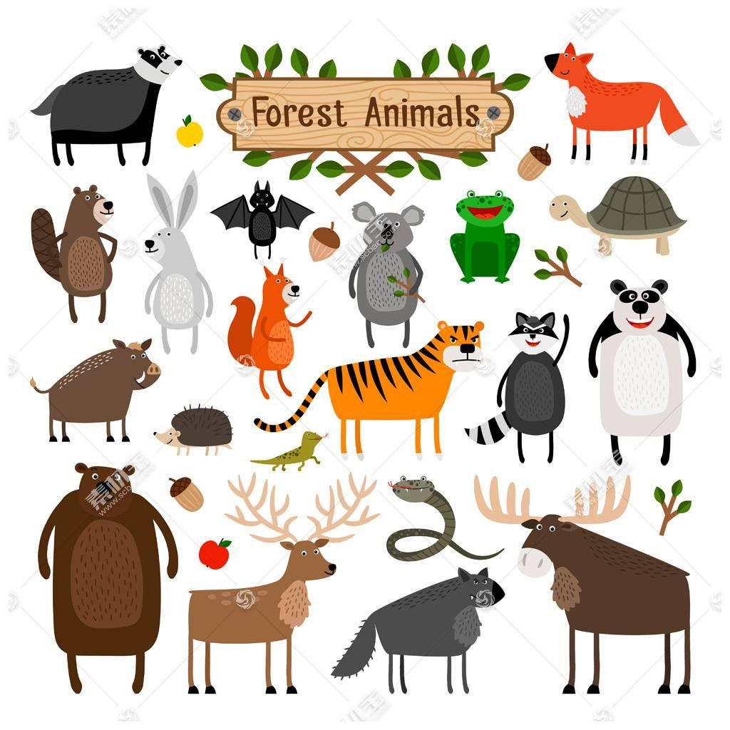 卡通森林动物图片